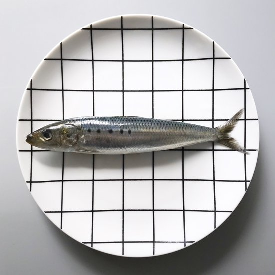 "Swimsuit Department:""Grid"" Dinner Plate"