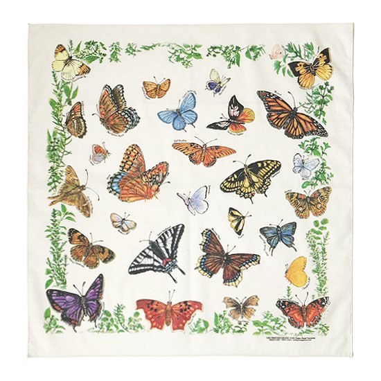 THE PRINTED IMAGE:バンダナ「Butterflies」
