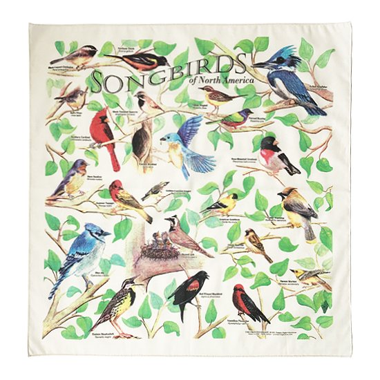 THE PRINTED IMAGE:バンダナ「Song Birds」