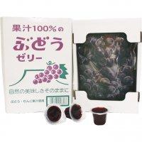 果汁 100% ゼリー BOX ぶどう味 【贈答 ギフト 九州 全国 特産品】