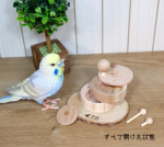 <img class='new_mark_img1' src='https://img.shop-pro.jp/img/new/icons57.gif' style='border:none;display:inline;margin:0px;padding:0px;width:auto;' />Birdsふぉるすオリジナル〇フォレイジングトイ・きのこのタワー2段タイプ