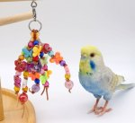 <img class='new_mark_img1' src='https://img.shop-pro.jp/img/new/icons13.gif' style='border:none;display:inline;margin:0px;padding:0px;width:auto;' />Jerry's bird toy〇Doun Pour蝶々※ステップスタンドにも!