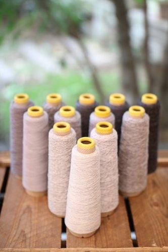 ツルグミ(じょうたのカシミヤ糸12本セット)