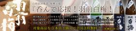 山形県沖地震 復興支援「呑んで応援!羽前白梅!」