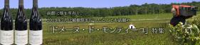函館に畑を所有し、2019年7月に植樹祭を行って話題の「ドメーヌ・ド・モンティーユ」特集