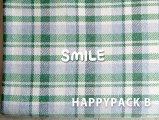 2018 HAPPYPACK B-1(グリーン×グレー)