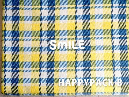 2018 HAPPYPACK B-3(ブルー×イエロー)