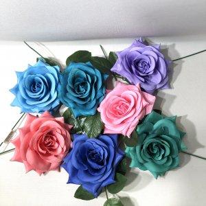 フラメンコ薔薇