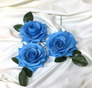 薔薇  青