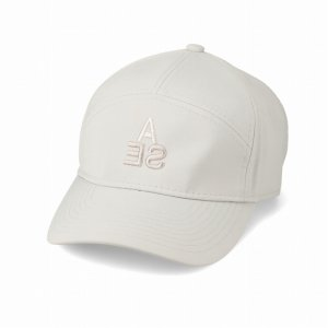 WIND AND SEA/ウィンダンシー/8th Collection/WDS 7PANEL (WR) CAP(L.GRAY)/キャップ