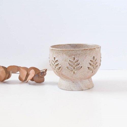 fuji-gallery 碗 木枝 茶