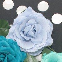 南の薔薇 11cm