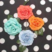 南の薔薇 8cm