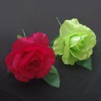 小さな南のバラ