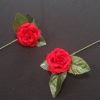小さなバラ 4.5�