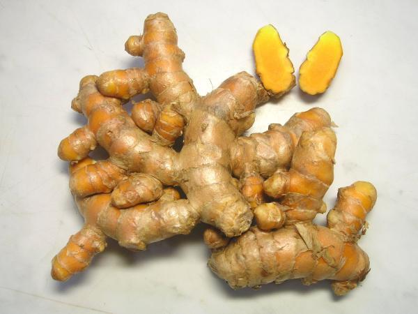 秋ウコンの塊根(食用、苗用:10苗分):1セット(約100g)