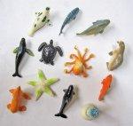 #30 ちゃぷちゃぷリアル海洋生物(50コ)