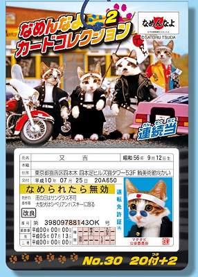 #30 なめんなよカードコレクション2弾(20付)