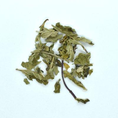 ミントリーフ Peppermint Leaf (10g)