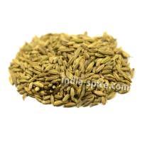 業務用 フェンネルシード (500g) Fennel seeds