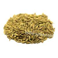 業務用 フェンネルシード (1kg) Fennel seeds