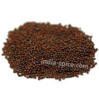 業務用 マスタードシードブラウン (500g) Mustard seeds (brown)
