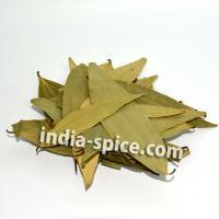 ベイリーフ Bay leaf(100g)
