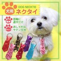 簡単装着♪気軽にわんちゃんのおしゃれが楽しめる犬用ネクタイ