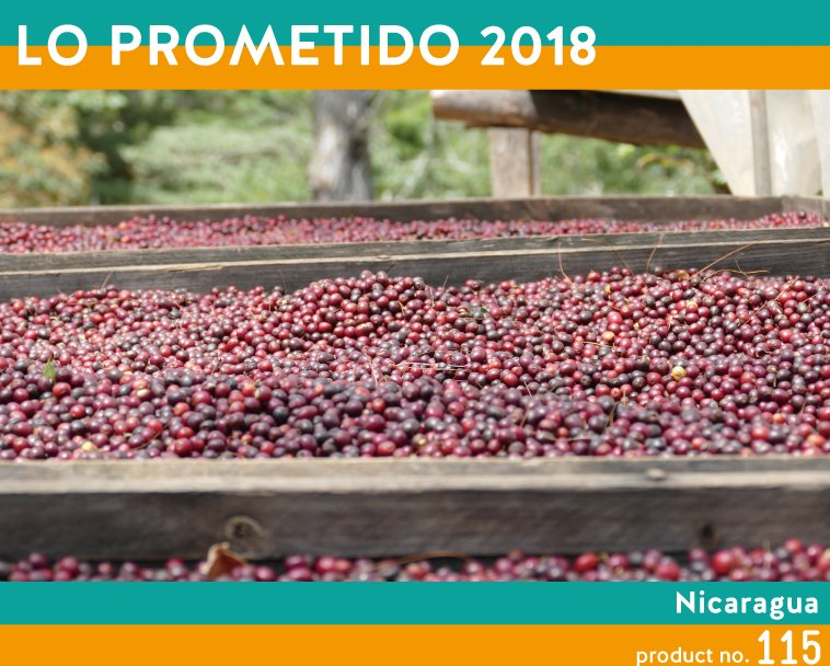 【ニカラグア】ロ・プロメティード2018 1,300円~ 温かいうちはミルクチョコレート、冷めるにつれマンゴーやマンダリンオレンジ、ハイビスカスティーのようにエレガントで華やかな味わいがいっぱいに広がる。 後味は蜂蜜のようにいつまでも甘くコーヒーであることを忘れるよう。 ミルクチョコレート、マンゴー、マンダリンオレンジ、ハイビスカス、はちみつ