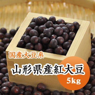 【28年産】山形県紅大豆(5kg)