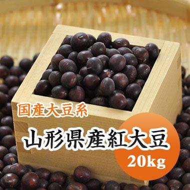 【28年産】山形県紅大豆(20kg)