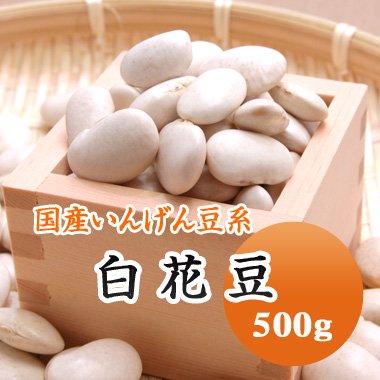 【29年産】北海道産 白花豆(500g)