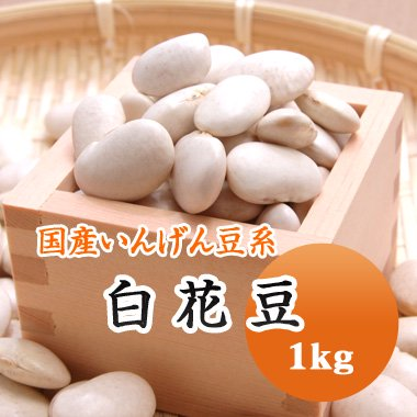 【29年産】北海道産 白花豆(1kg)