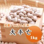 【28年産】北海道産 大手亡(白いんげん)(1kg)