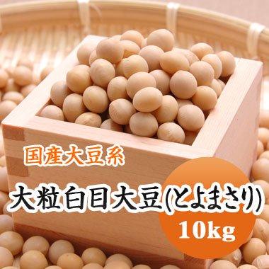 【29年産】北海道産 大粒白目大豆(とよまさり)(10kg)