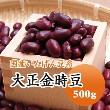 【28年産】北海道産 大正金時(500g)