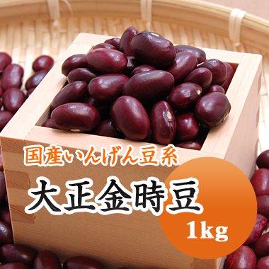【28年産】北海道産 大正金時(1kg)