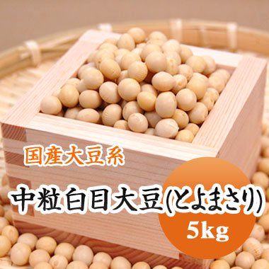 【29年産】北海道産 中粒白目大豆(とよまさり)(5kg)