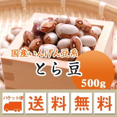 【ゆうメール便送料無料】【27年産】北海道産 とら豆(500g)※代引不可・同梱不可商品