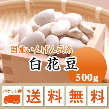 【ゆうメール便送料無料】【27年産】北海道産 白花豆(500g)※代引不可・同梱不可商品