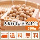 【ゆうメール便送料無料】【29年産】北海道産 大粒白目大豆(とよまさり)(500g)