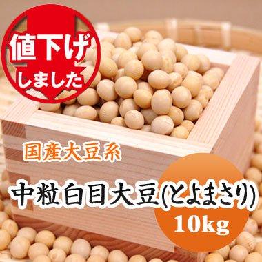 【28年産】北海道産 中粒白目大豆(とよまさり)(10kg)