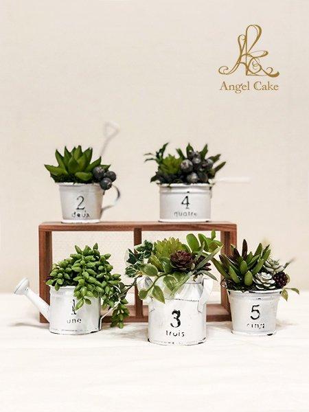 多肉植物 アンティーク調アーティフィシャルグリーン「5個セット」
