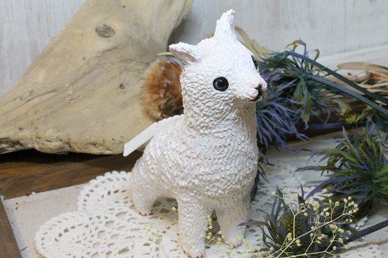 アルパカウサギ-2