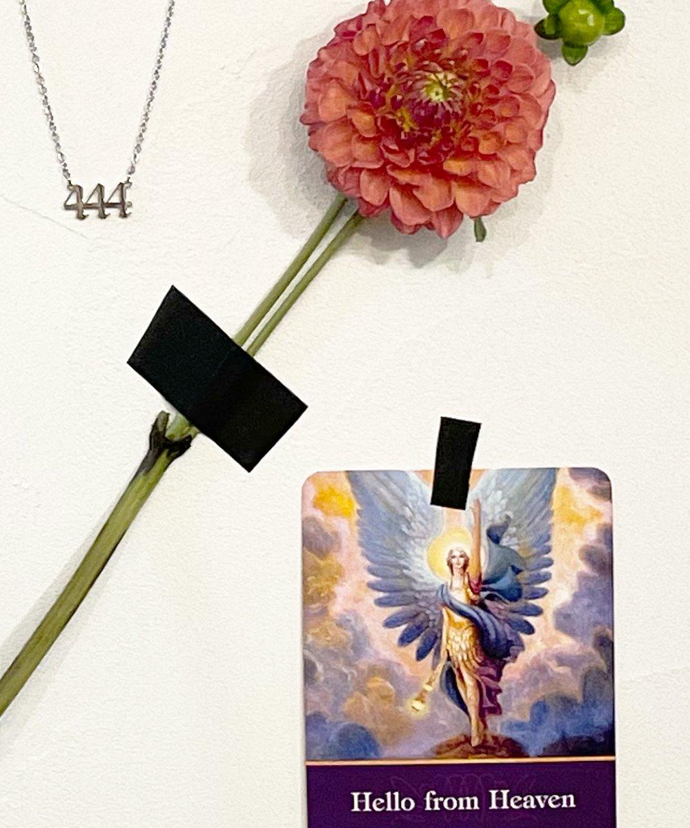 Angel#Necklace(2color)#444