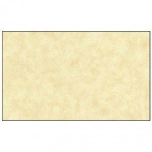 【B】羊皮紙古染