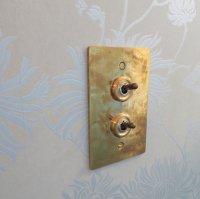 真鍮プレート2スイッチ