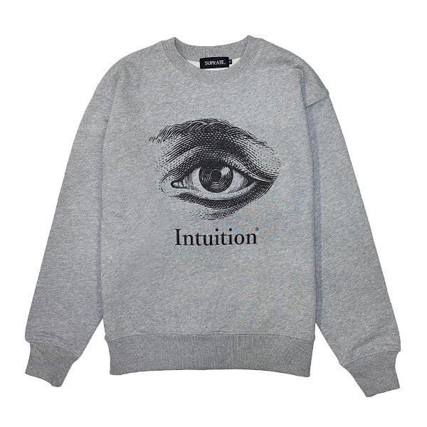 <img class='new_mark_img1' src='https://img.shop-pro.jp/img/new/icons5.gif' style='border:none;display:inline;margin:0px;padding:0px;width:auto;' />Intuition Crew Neck Sweat