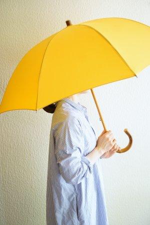 【Bon Bon store】スタンダード長傘(雨傘)