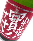 【熟成酒】 此乃花ノ實ノささ 梅酒 1800ml 【2010年6月蔵出】